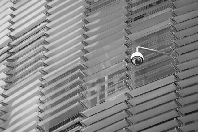 מצלמות אבטחה – חובה בכל עסק